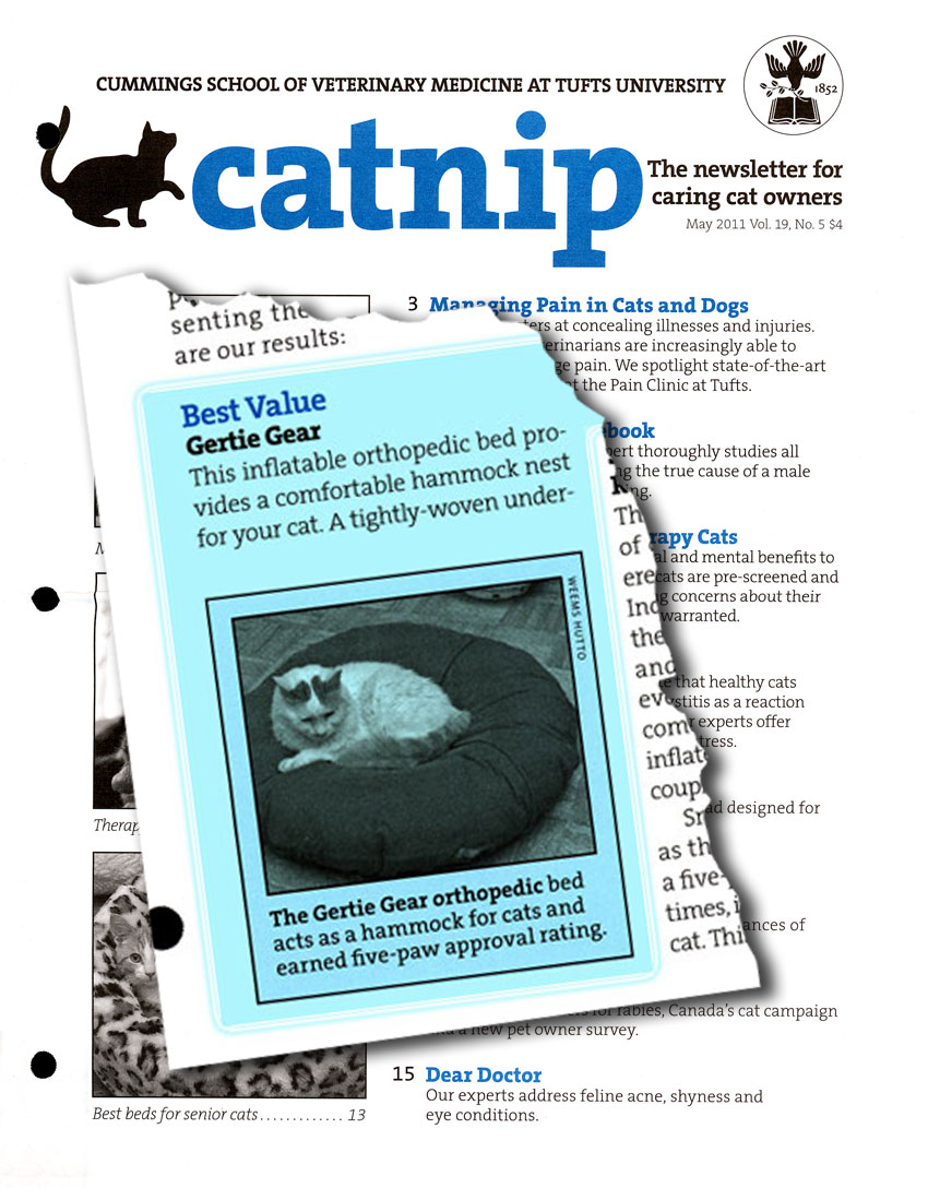 Catnip cover with Gertie Gear Best Value bed for senior cats