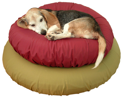 Gertie on stacked 30 and 36 inch  airbeds with nylon slipcovers