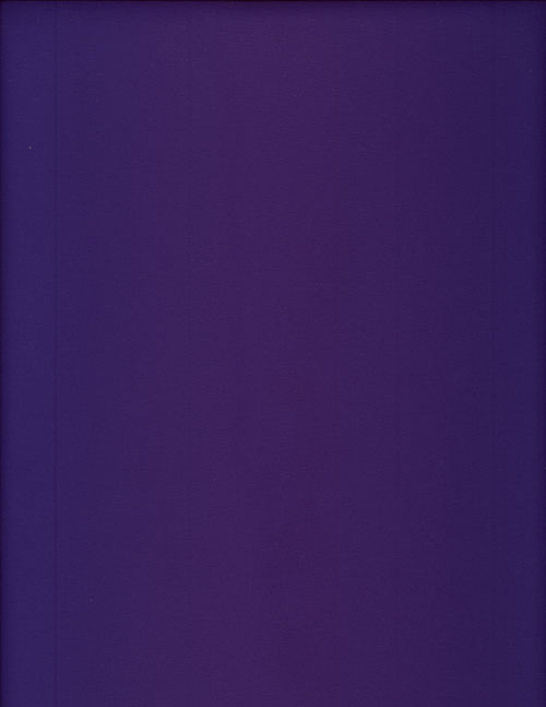 ROYAL PURPLE - NYLON cover/airbed set-violet, grape, purple, nylon, mildew resistant, rot resistant, repels water, repels hair, shedding solution, lightweight, smooth, pet bed, dog bed, cat bed, pet air bed, orthopedic support, veterinarian recommended, machine washable covers, machine dry slipcovers, apparel fabric replacement covers, easy change, sustainable, eco-friendly, dog, cat, claw and nail proof, vet recommended, environmentally responsible, pet bed, dog bed, cat bed, natural nest, nesting area, long lasting, never compresses, replacement slipcovers, handcrafted, made in Michigan, made in USA, snazztastic, fashion covers, home decor, style, ARNO, Animal Rescue New Orleans